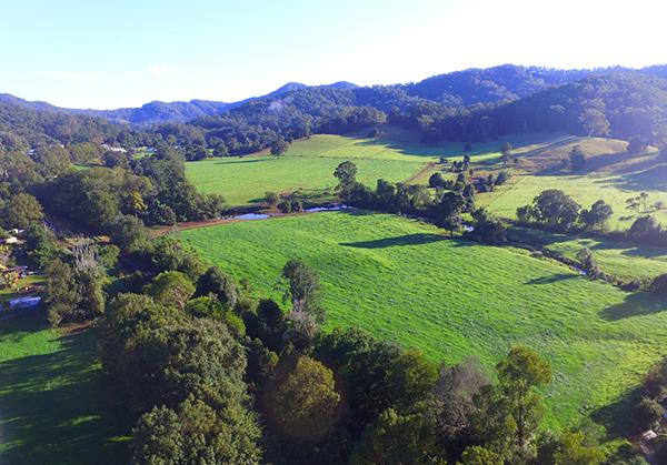 aerial view pasturesx600